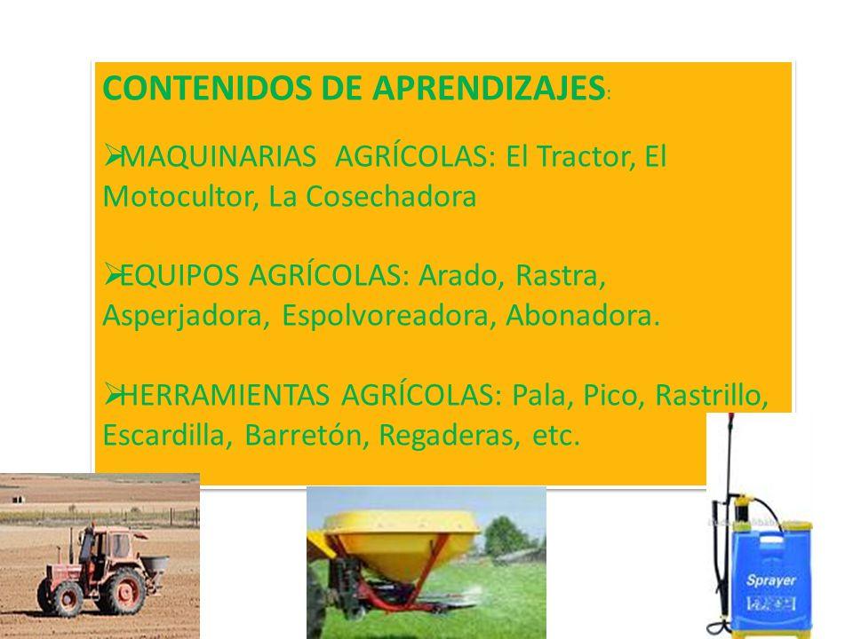 CONTENIDOS DE APRENDIZAJES: