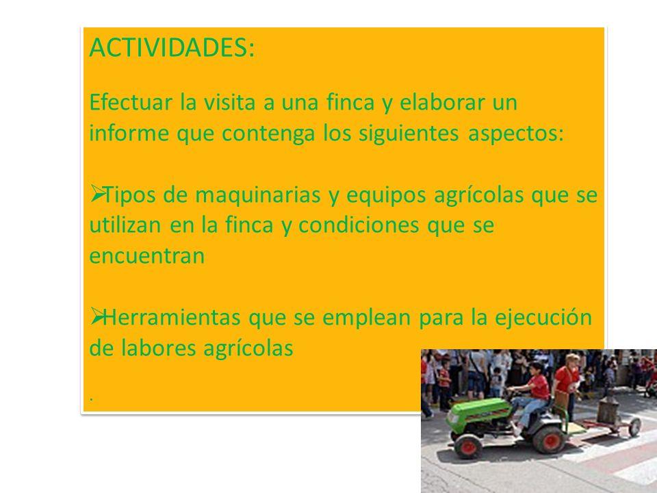 ACTIVIDADES: Efectuar la visita a una finca y elaborar un informe que contenga los siguientes aspectos: