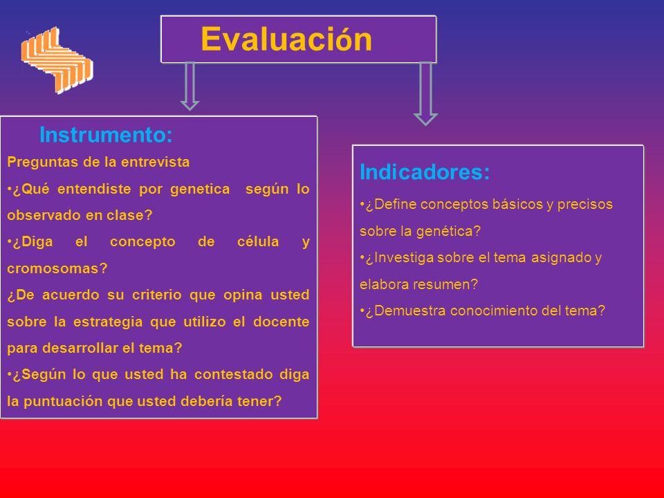 Evaluación Instrumento: Indicadores: Preguntas de la entrevista