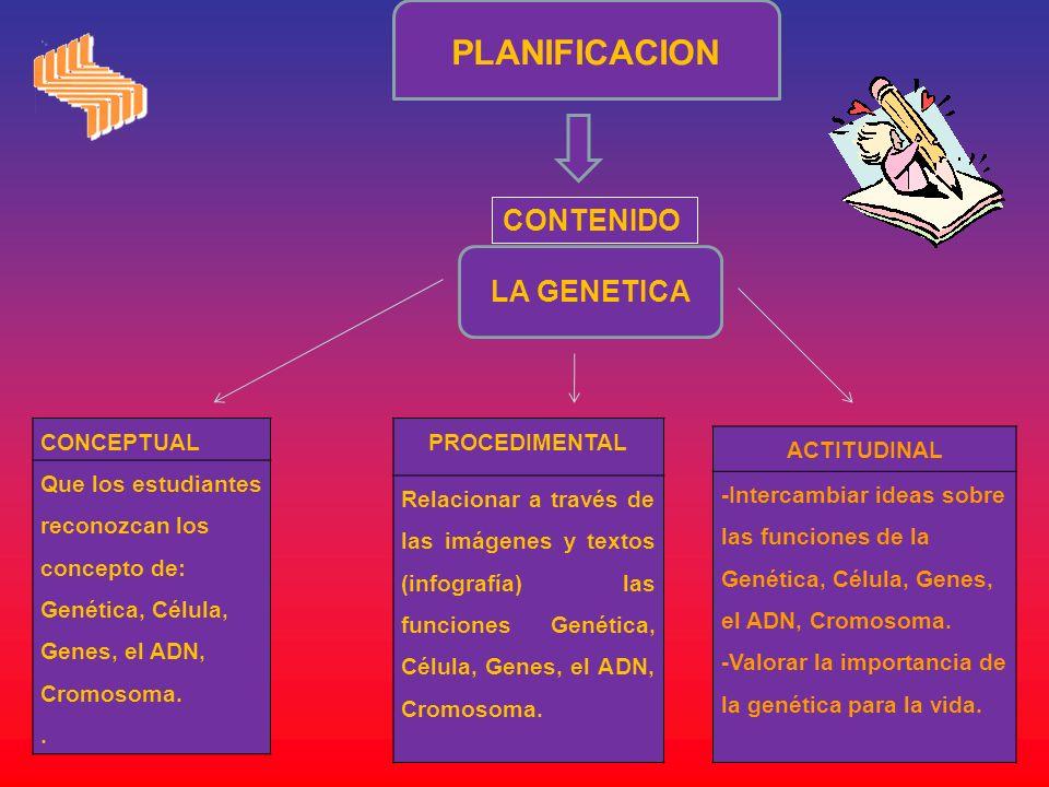 PLANIFICACION CONTENIDO LA GENETICA CONCEPTUAL