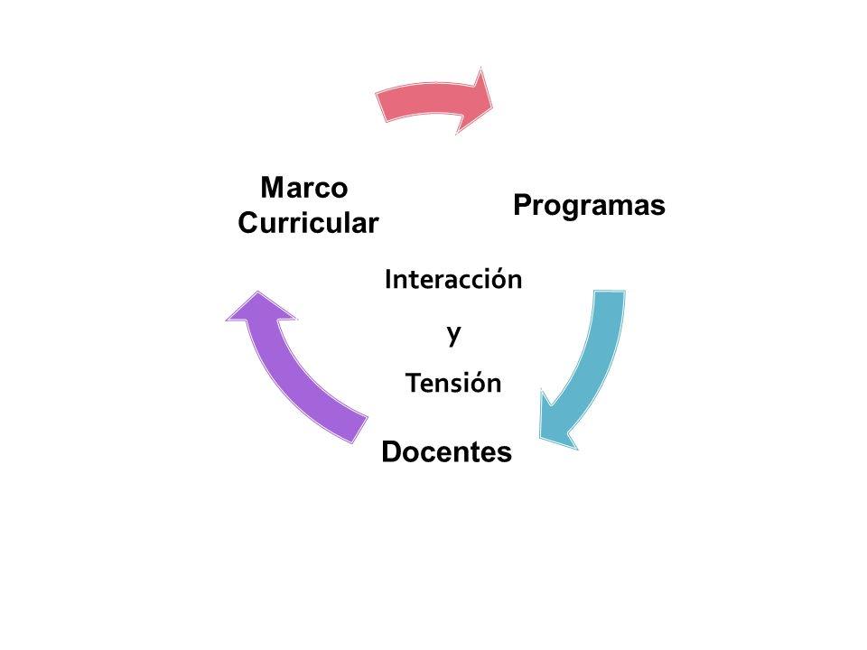 Programas Docentes Curricular Marco Interacción y Tensión