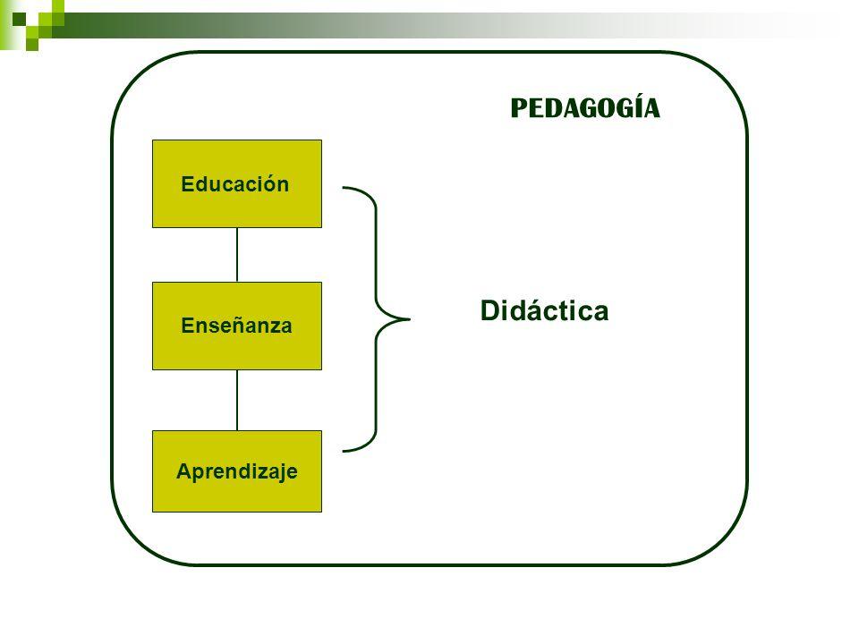 PEDAGOGÍA Educación Enseñanza Didáctica Aprendizaje