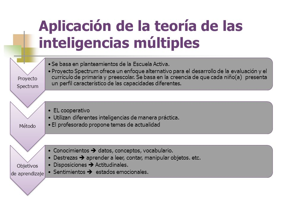 Aplicación de la teoría de las inteligencias múltiples