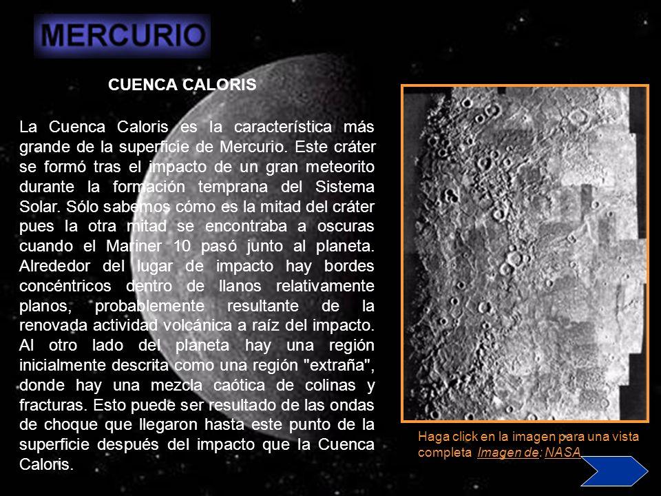 CUENCA CALORIS