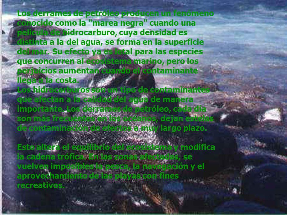 Los derrames de petróleo producen un fenómeno conocido como la marea negra cuando una película de hidrocarburo, cuya densidad es distinta a la del agua, se forma en la superficie del mar. Su efecto ya es letal para las especies que concurren al ecosistema marino, pero los perjuicios aumentan cuando el contaminante llega a la costa.