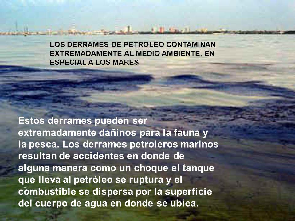 LOS DERRAMES DE PETROLEO CONTAMINAN