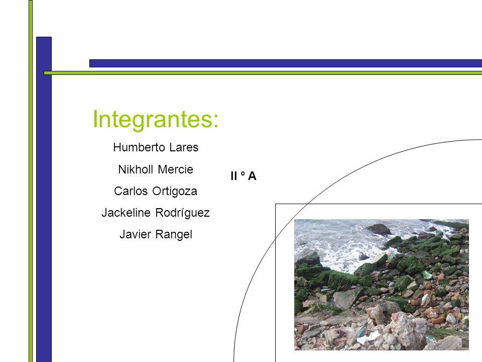 Integrantes: Humberto Lares Nikholl Mercie Carlos Ortigoza