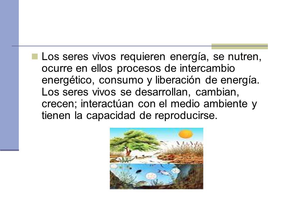 Los seres vivos requieren energía, se nutren, ocurre en ellos procesos de intercambio energético, consumo y liberación de energía.