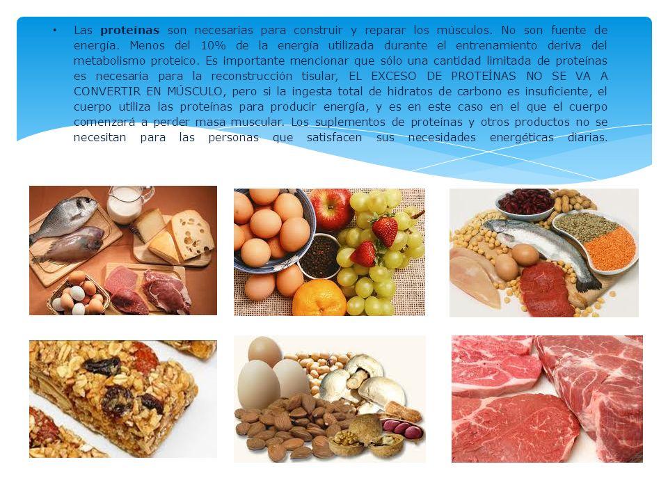 Las proteínas son necesarias para construir y reparar los músculos