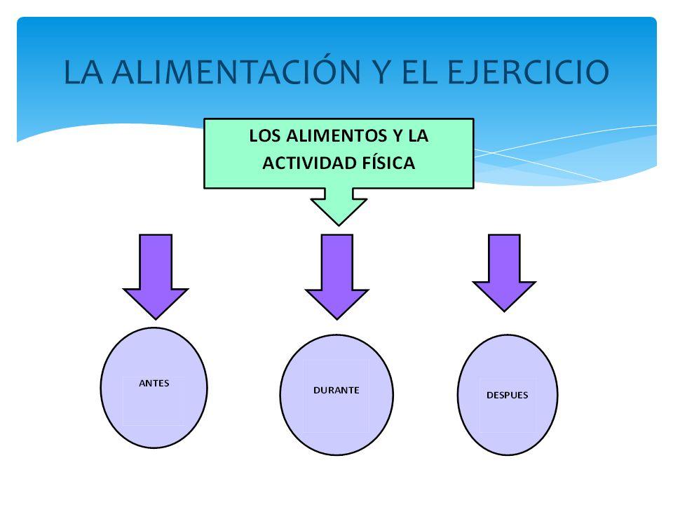 LA ALIMENTACIÓN Y EL EJERCICIO