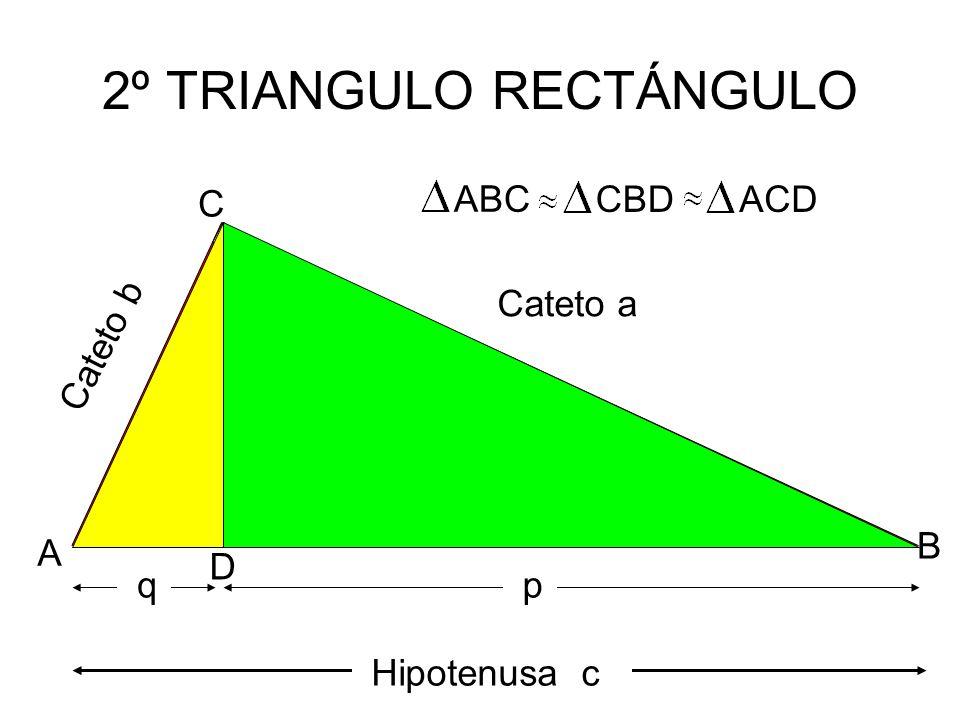 2º TRIANGULO RECTÁNGULO