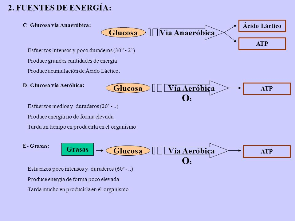 O2 O2 2. FUENTES DE ENERGÍA: Vía Anaeróbica Glucosa Vía Aeróbica