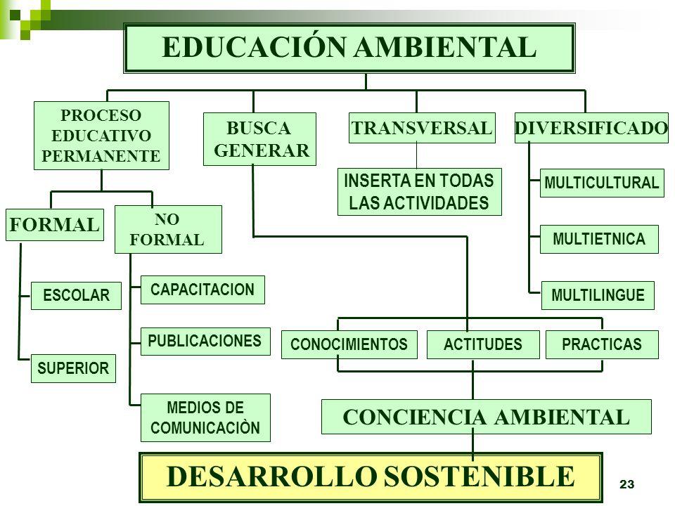 EDUCACIÓN AMBIENTAL DESARROLLO SOSTENIBLE