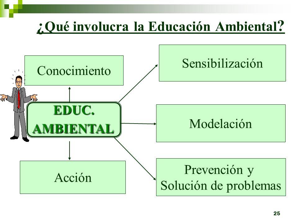 ¿Qué involucra la Educación Ambiental