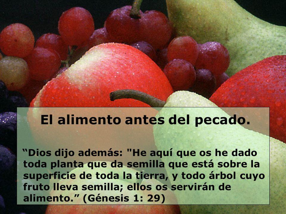 El alimento antes del pecado.