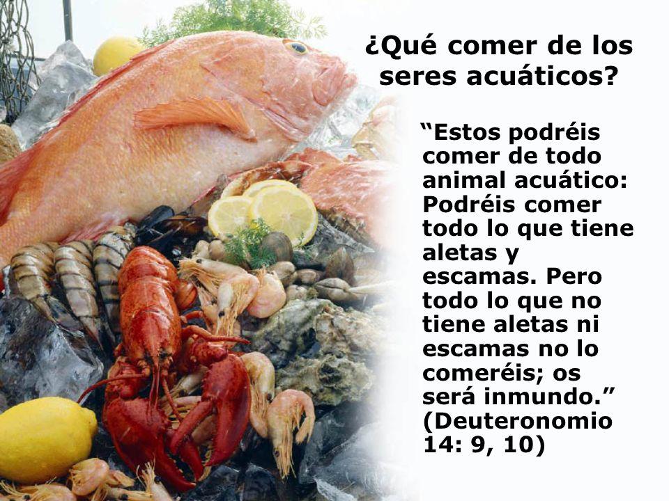 ¿Qué comer de los seres acuáticos