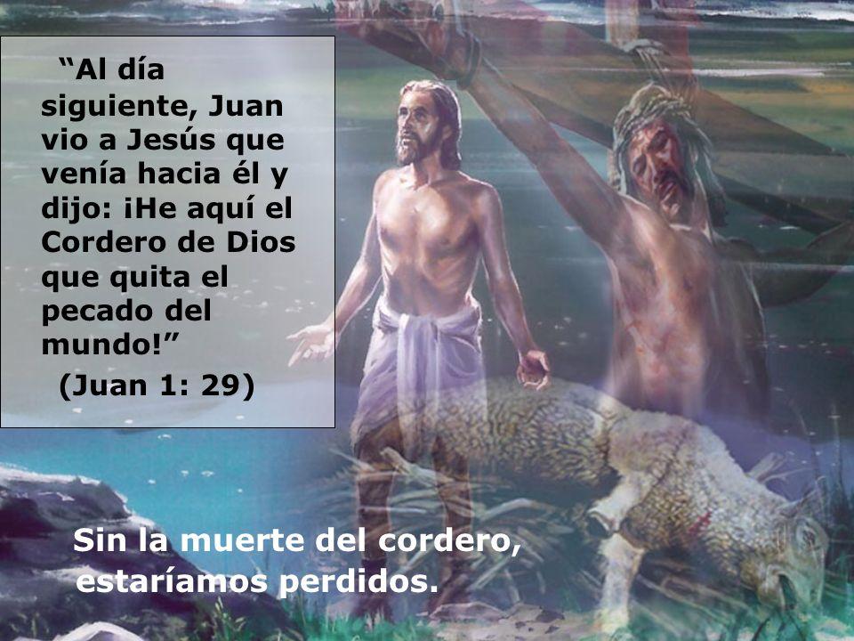 Al día siguiente, Juan vio a Jesús que venía hacia él y dijo: ¡He aquí el Cordero de Dios que quita el pecado del mundo!