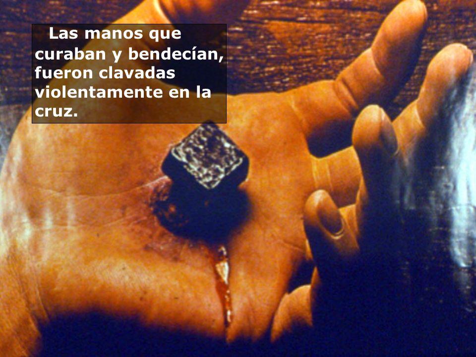 Las manos que curaban y bendecían, fueron clavadas violentamente en la cruz.