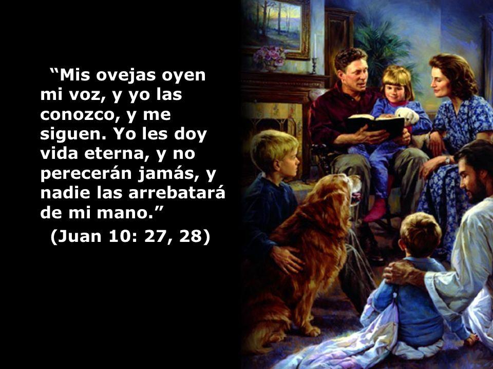 Mis ovejas oyen mi voz, y yo las conozco, y me siguen