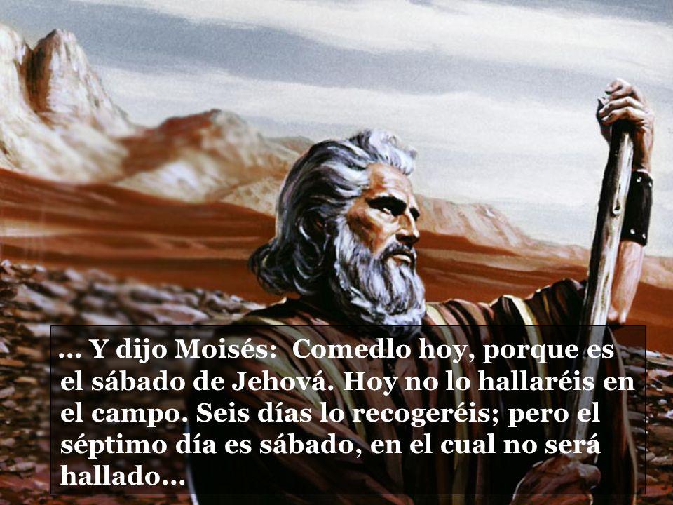 Y dijo Moisés: Comedlo hoy, porque es el sábado de Jehová