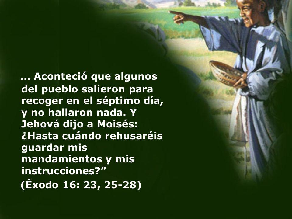... Aconteció que algunos del pueblo salieron para recoger en el séptimo día, y no hallaron nada. Y Jehová dijo a Moisés: ¿Hasta cuándo rehusaréis guardar mis mandamientos y mis instrucciones