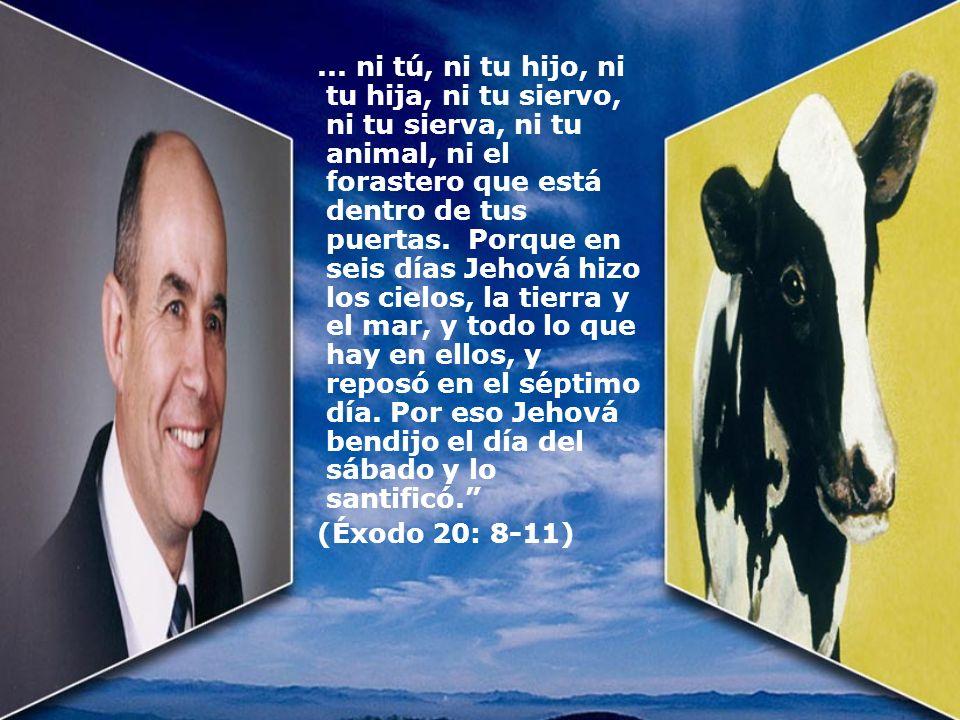 ... ni tú, ni tu hijo, ni tu hija, ni tu siervo, ni tu sierva, ni tu animal, ni el forastero que está dentro de tus puertas. Porque en seis días Jehová hizo los cielos, la tierra y el mar, y todo lo que hay en ellos, y reposó en el séptimo día. Por eso Jehová bendijo el día del sábado y lo santificó.