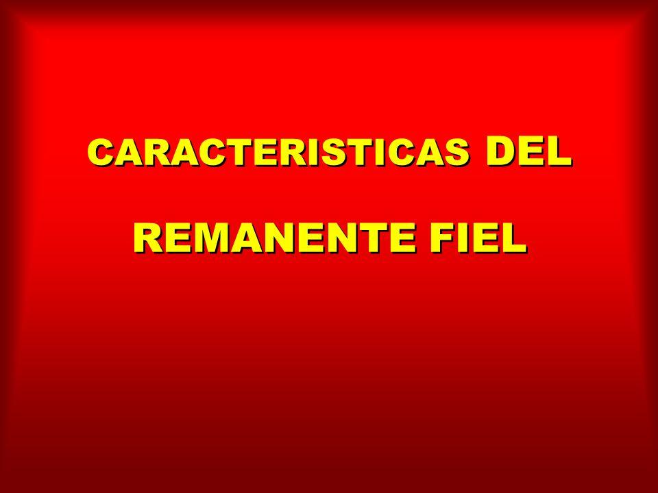 CARACTERISTICAS DEL REMANENTE FIEL