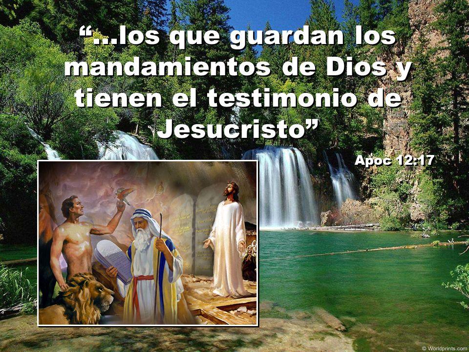 ...los que guardan los mandamientos de Dios y tienen el testimonio de Jesucristo