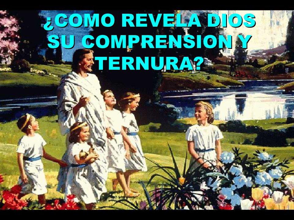 ¿COMO REVELA DIOS SU COMPRENSION Y TERNURA
