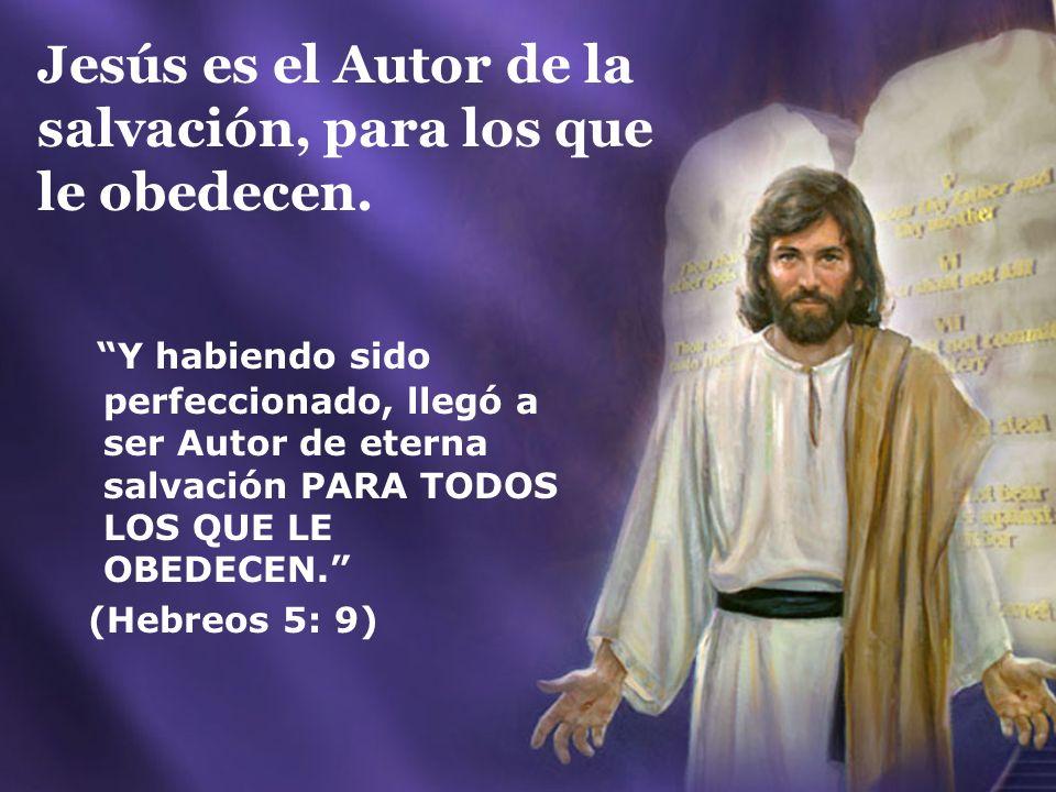 Jesús es el Autor de la salvación, para los que le obedecen.