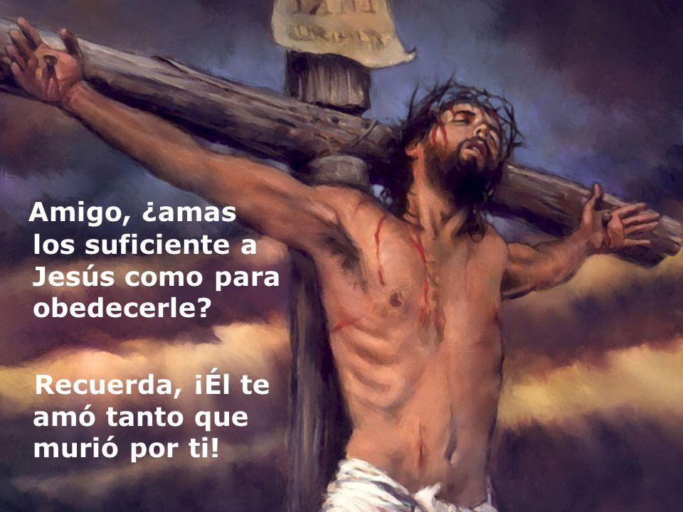 Amigo, ¿amas los suficiente a Jesús como para obedecerle