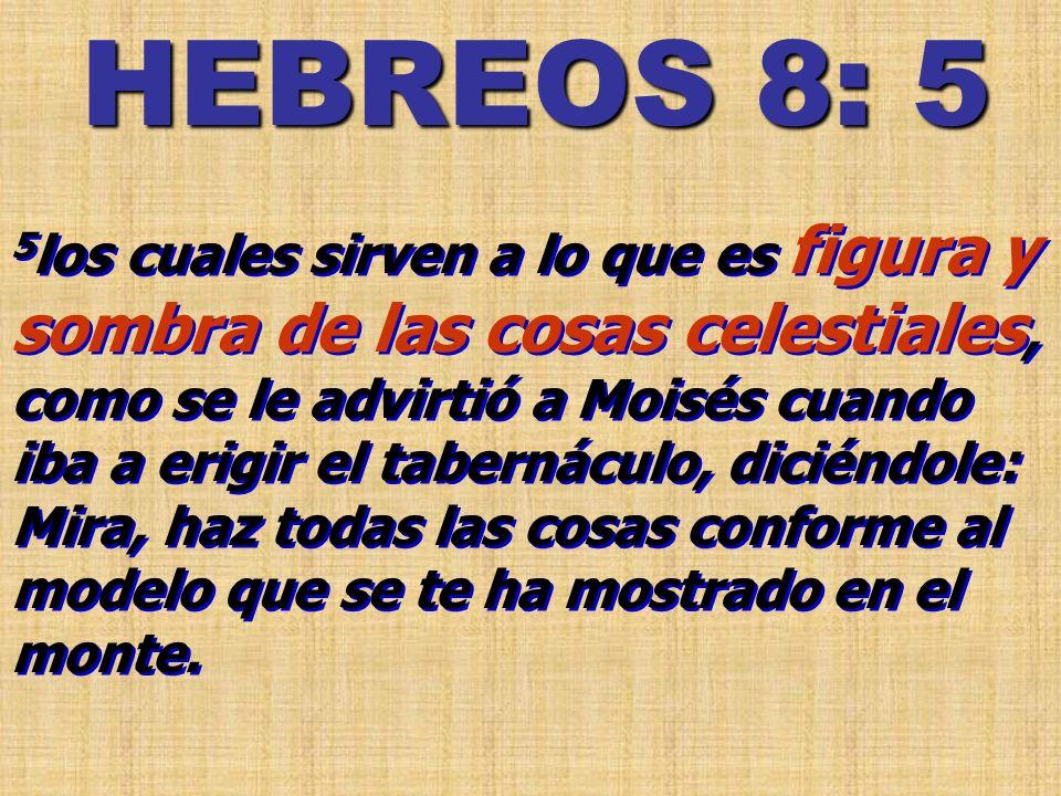 HEBREOS 8: 5
