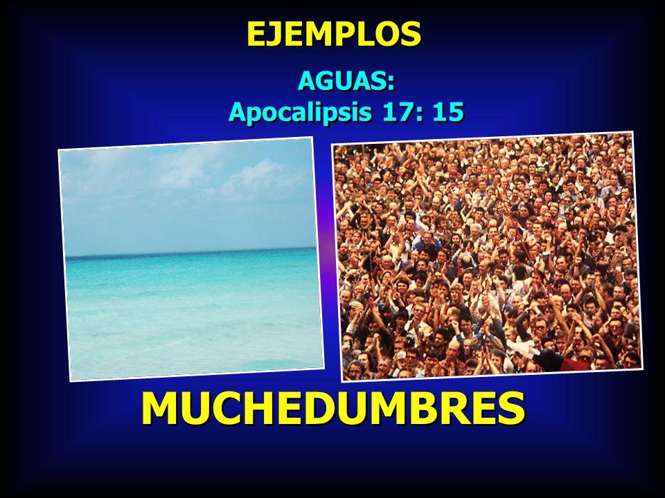 EJEMPLOS AGUAS: Apocalipsis 17: 15 MUCHEDUMBRES