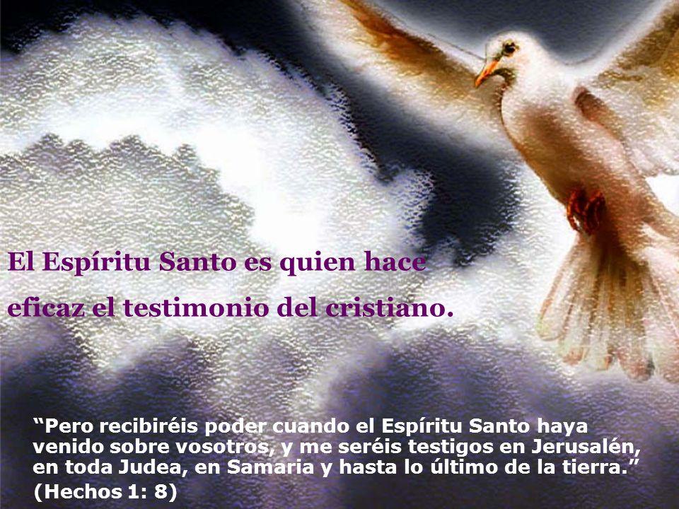 El Espíritu Santo es quien hace eficaz el testimonio del cristiano.