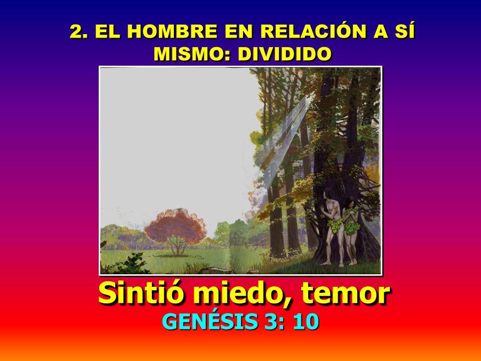 2. EL HOMBRE EN RELACIÓN A SÍ MISMO: DIVIDIDO