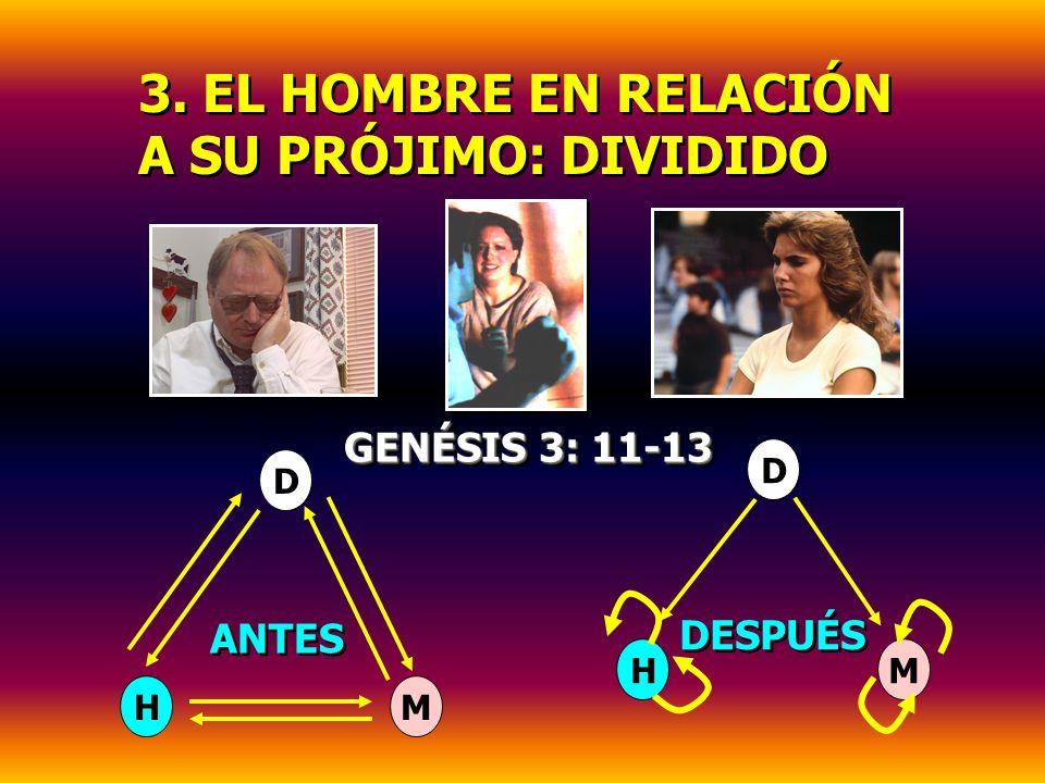 3. EL HOMBRE EN RELACIÓN A SU PRÓJIMO: DIVIDIDO