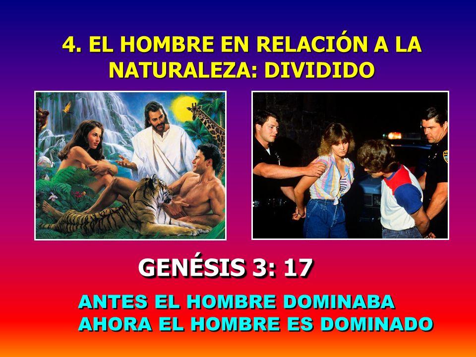 4. EL HOMBRE EN RELACIÓN A LA NATURALEZA: DIVIDIDO