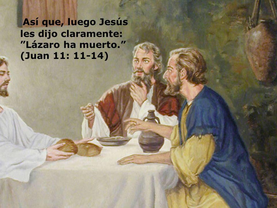 Así que, luego Jesús les dijo claramente: Lázaro ha muerto