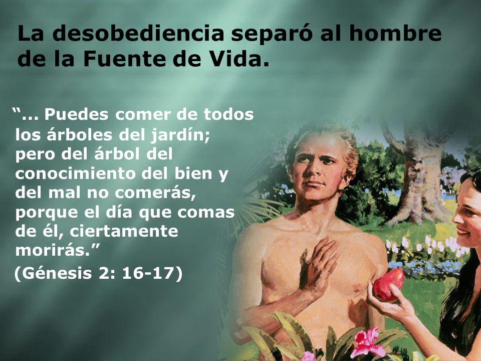 La desobediencia separó al hombre de la Fuente de Vida.