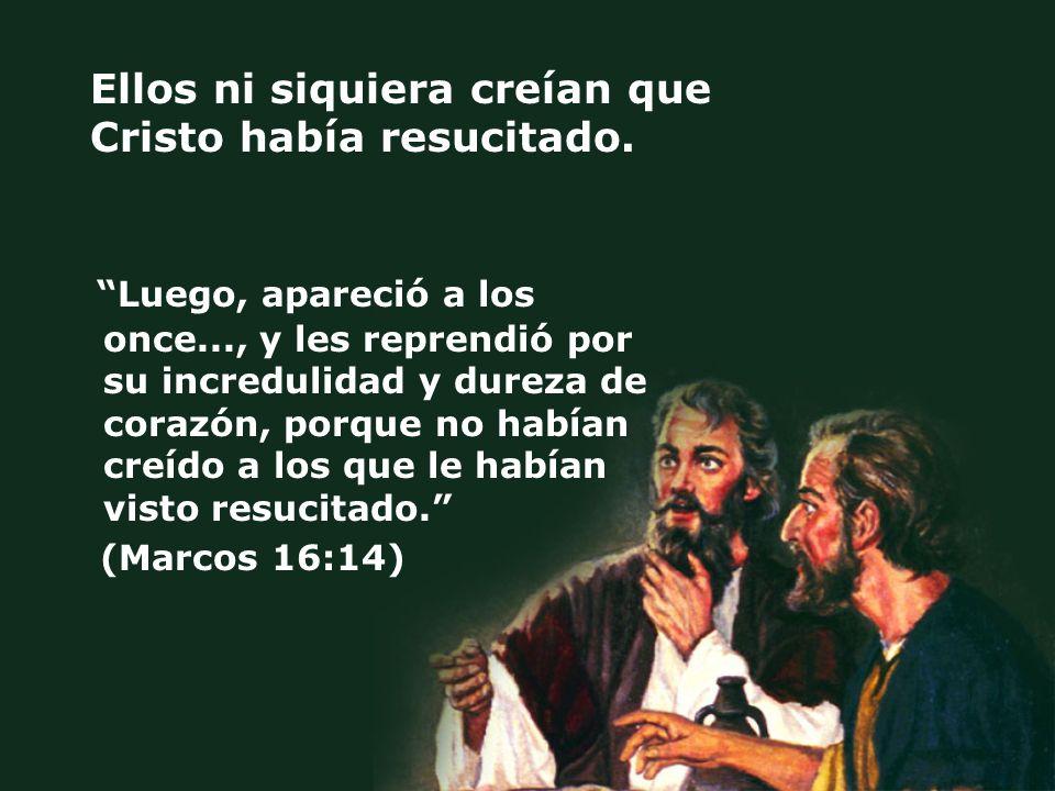Ellos ni siquiera creían que Cristo había resucitado.