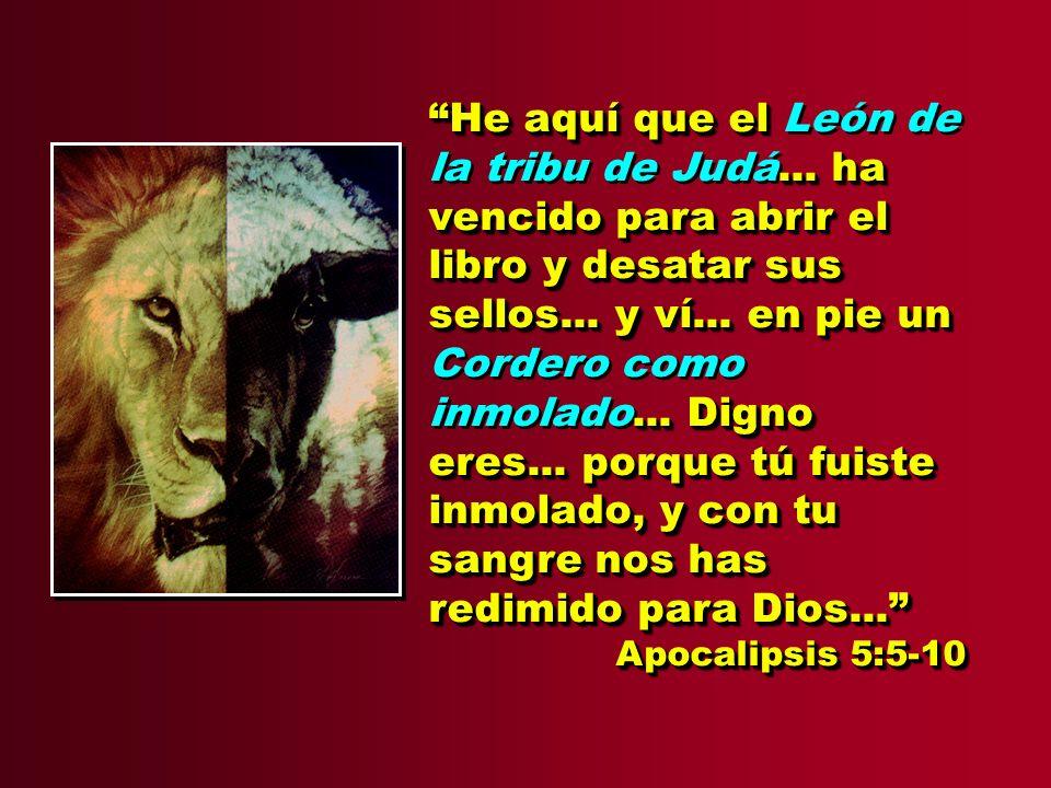 He aquí que el León de la tribu de Judá