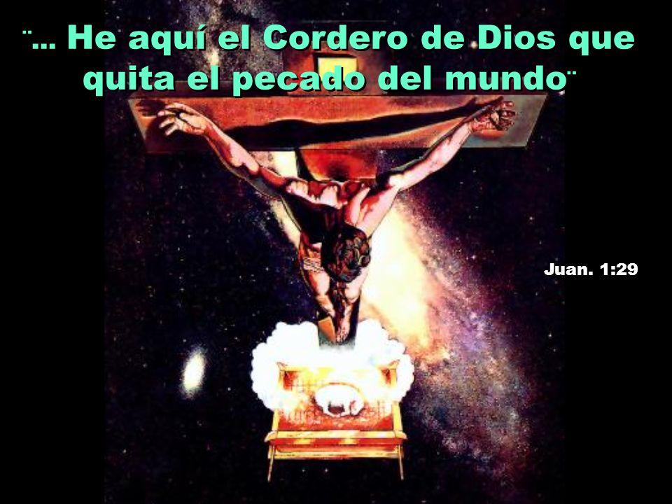 ¨... He aquí el Cordero de Dios que quita el pecado del mundo¨