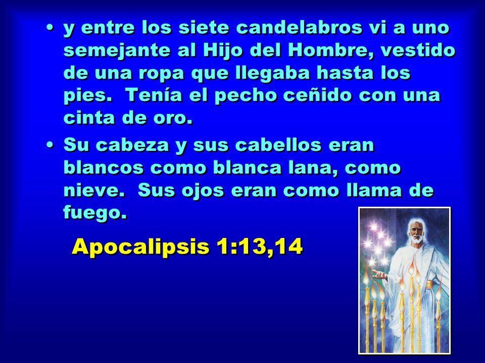 y entre los siete candelabros vi a uno semejante al Hijo del Hombre, vestido de una ropa que llegaba hasta los pies. Tenía el pecho ceñido con una cinta de oro.