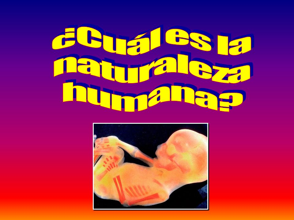 ¿Cuál es la naturaleza humana