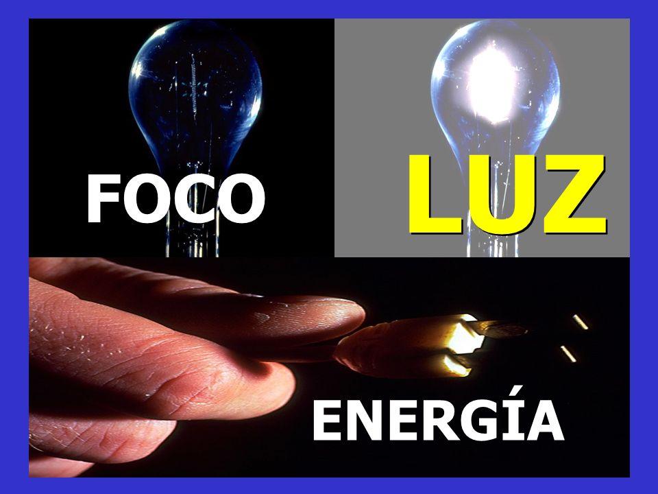 LUZ FOCO ENERGÍA