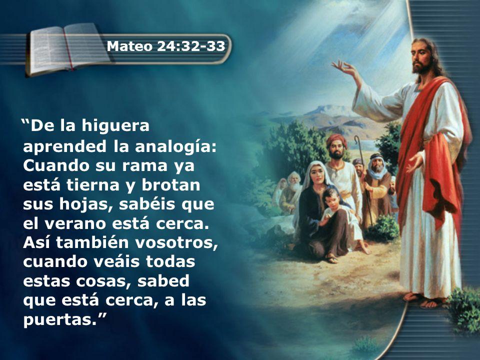 Mateo 24:32-33