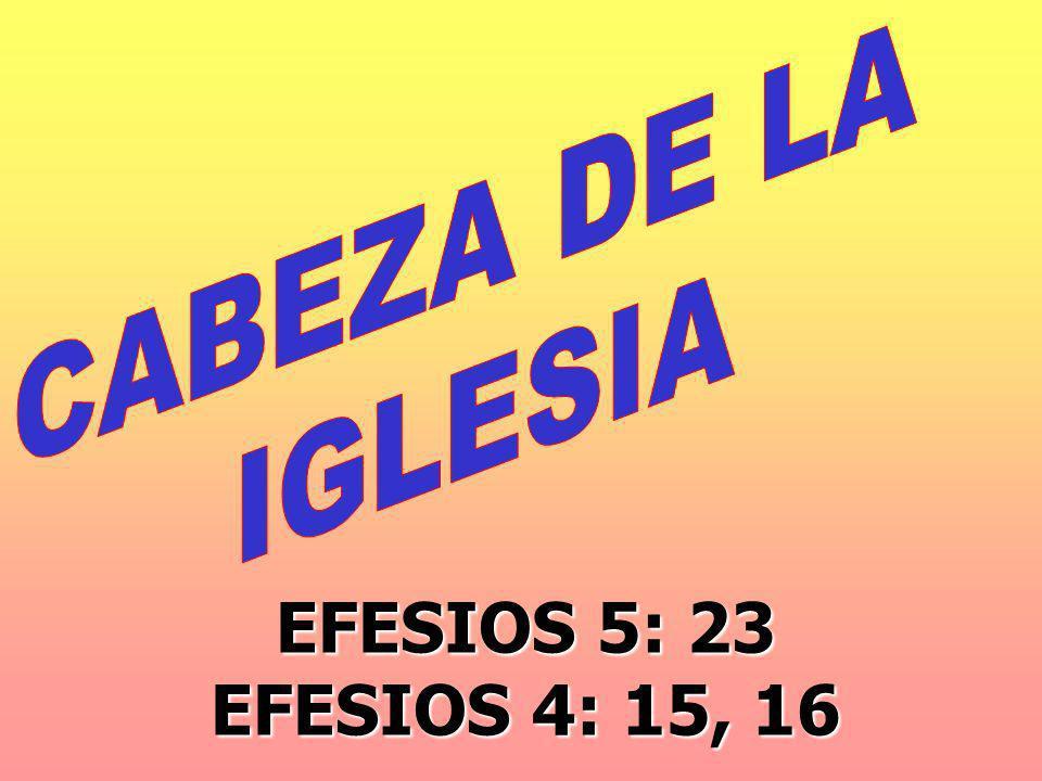 CABEZA DE LA IGLESIA EFESIOS 5: 23 EFESIOS 4: 15, 16