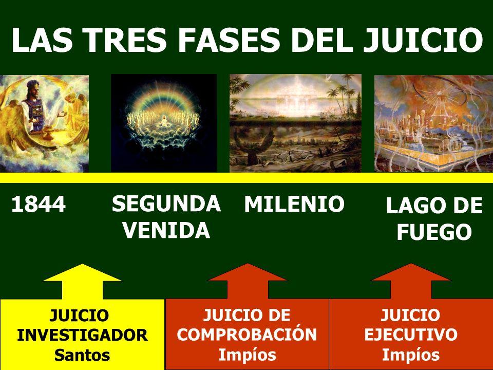 LAS TRES FASES DEL JUICIO