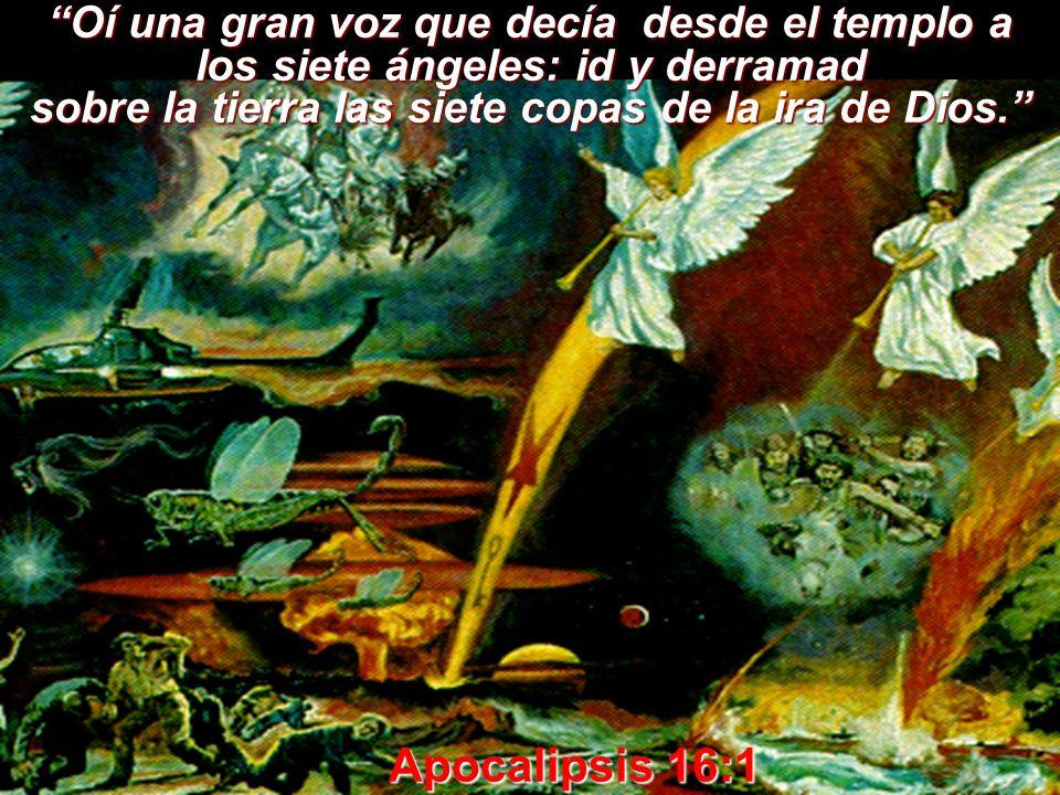sobre la tierra las siete copas de la ira de Dios.