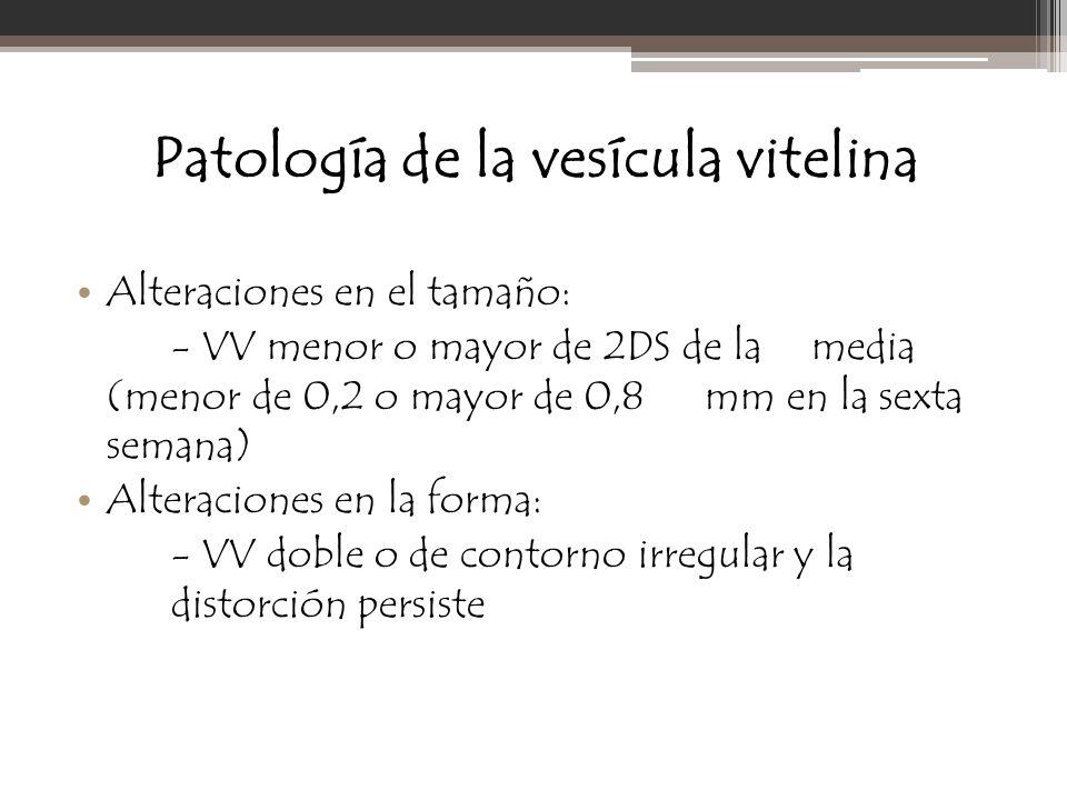 Patología de la vesícula vitelina